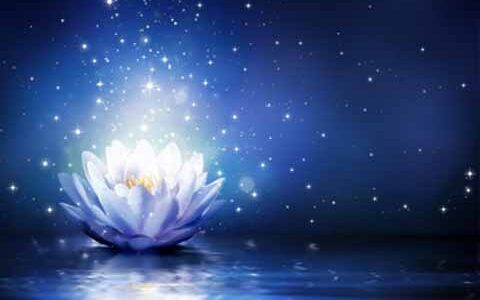 The Sparkling Presence of the Guru