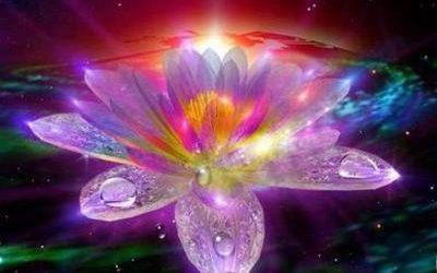 The Eight Lotuses (Asht Kanval)