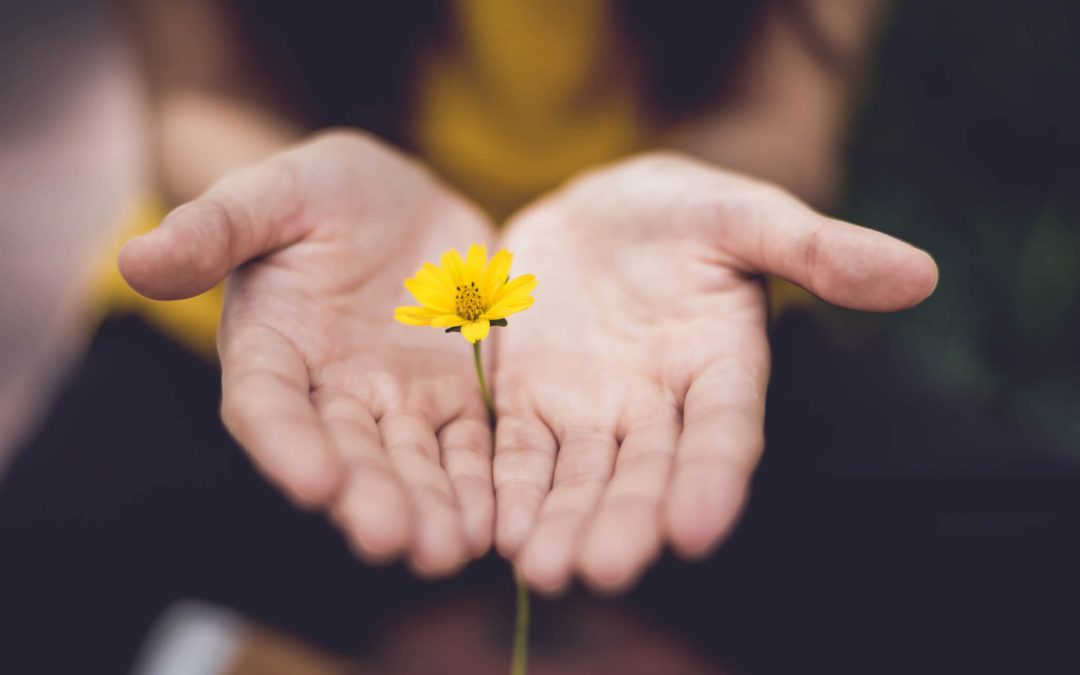 Five Things in Life to Forgive